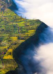 Village near cliff at Bromo Volcano Java, Indonesia