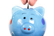 Piggy bank officer put money inside ,clipping path