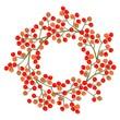 czerwona jarzębina jesienny wianek na białym tle