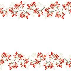 czerwona jarzębina podwójny poziomy border na bieli
