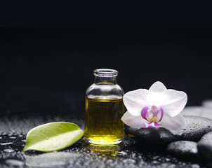 Spa still with white orchid, massage oil, leaf, pebbles