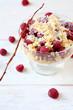 Delicious raspberry dessert with cookies