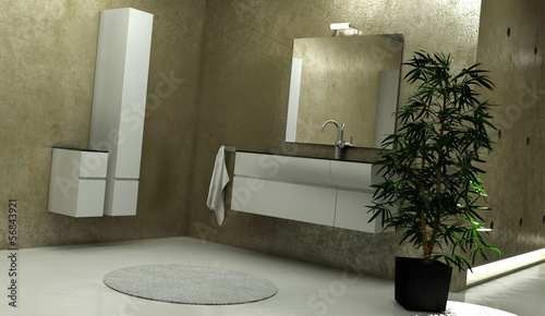 Modern Bathroom Interior with Modern Furniture