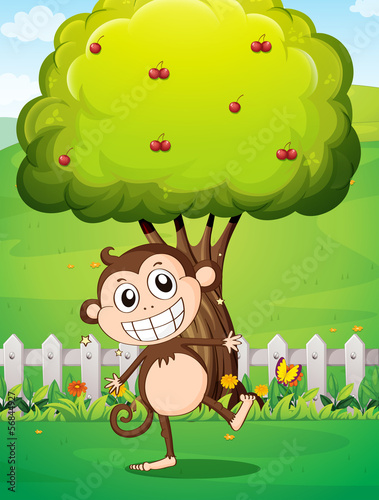 A smiling monkey at the yard in front of the tree with cherries