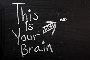 This is Your Brain Funny Comment or Joke