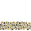 żółte dębowe liście i żołędzie na bieli jesienny dolny border