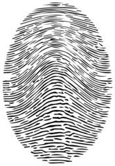 Detailed Forensic Fingerprint