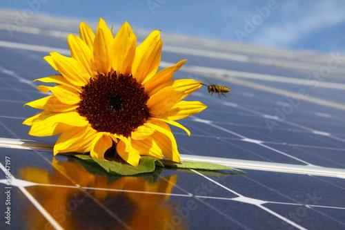 canvas print picture solaranlage