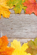Wooden planks and  autumn leaves