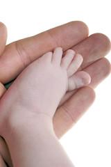 Hand hält einen Babyfuß