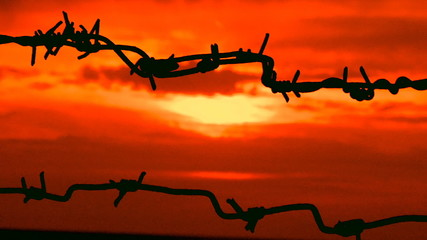 sunset behind barbed wire