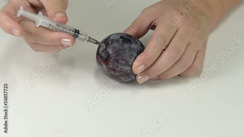 Poisoning injection to plum