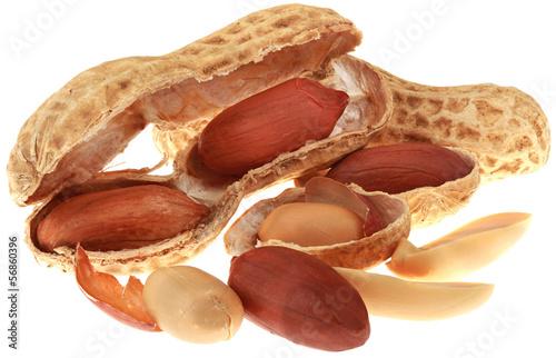 Peanuts Cutout
