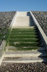 Bemooste Treppe