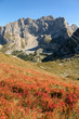 View of the highest peaks of Durmitor National Park