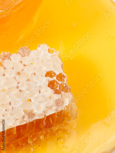 fresh Honeycomb and honey around. close up