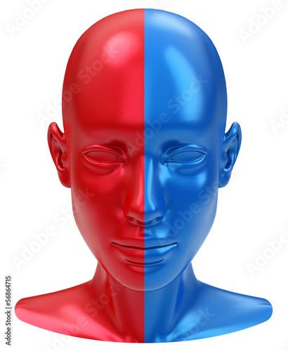 Die gespaltene Persönlichkeit