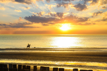 Unidentified person rides horse on a seashore in sunset
