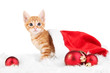 Cute little red kitten in Santa hat isolated on white