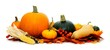Group of harvest vegetables with autumn leaves