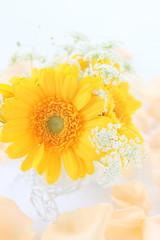 ガーベラと薔薇の花びら