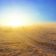 pale sun above a prairie