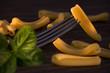 Caserecce, italian raw pasta