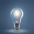 canvas print picture - Light Bulb