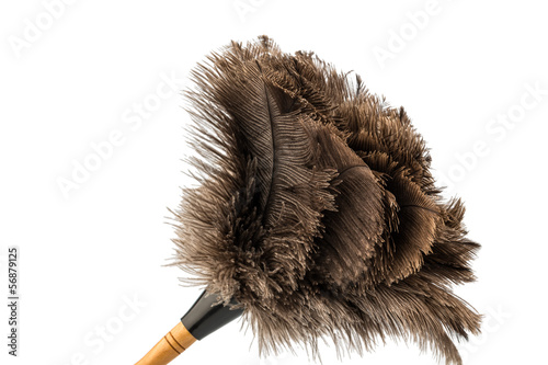 feather duster against white background