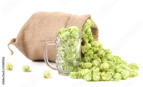 Sack and mug with hop.