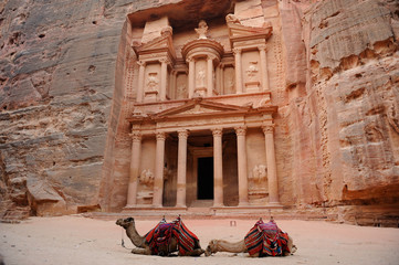 Petra - Jordan - Camels in front of the Treasury (Al Khazneh)