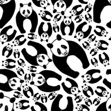 motif de panda transparente