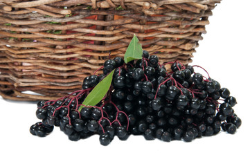 Basket and elderberry