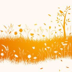 Gräser Herbst Hintergrund