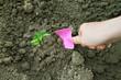 Planting on vegetable garden