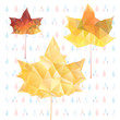 abstract autumn maple leaves