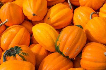 Orange acorn squash at market