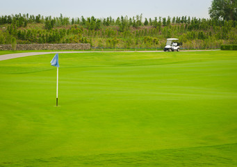 Sport view landscape sand bunker and green grass pattern of golf