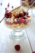 raspberry dessert with cookies biscuit crumbs