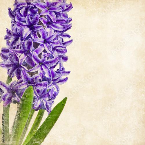 vintage-kwiaty