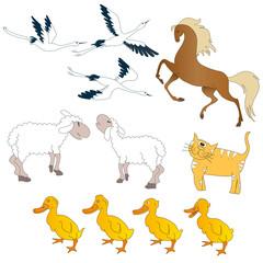 Farm Animals - Illustration, vector