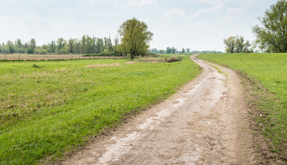 Meandering path in a picturesque rural landscape