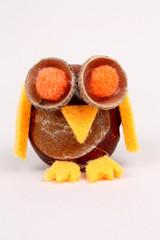Kastanieneule, orange