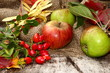 Herbstmotiv, Äpfel, Hagebutten, Herbstlaub