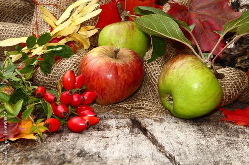 Herbstdekoration, Äpfel, Hagebutten, Herbstlaub