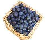 The basket full of a ripe blueberry