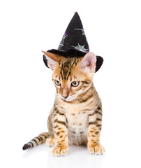 cat in costume for a masquerade. isolated on white background