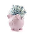 Piggy bank with polish money. Clipping path included.