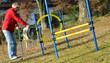 Agility Hunde Sport Sprung
