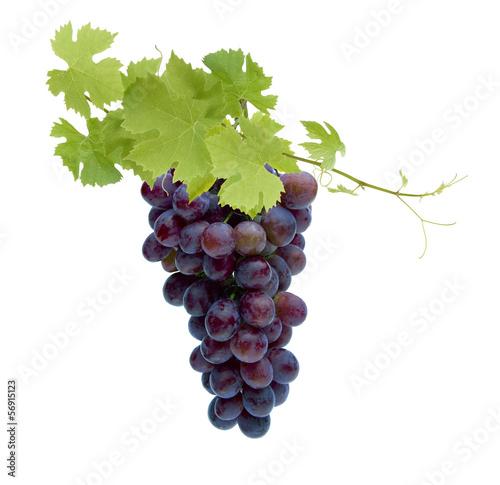 Rote Weinreben - 56915123